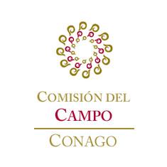 Comisión del Campo