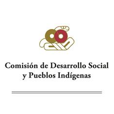 Comisión de Desarrollo Social y Pueblos Indígenas